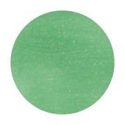 ★AKZENTZ(アクセンツ) ポリッシュカラーズ 7g#065 グリーンフラッシュ