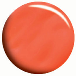 ★Calgel(カルジェル) カラージェル 10g コーラルオレンジ