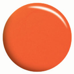★Calgel(カルジェル) カラージェル 10g サマーオレンジ