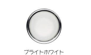 ★【送料無料】AKZENTZ(アクセンツ)  オプションズジェル 〔15g〕 【送料無料】 ブライト ホワイト
