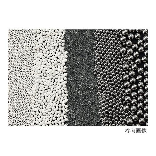 アズワン ビーズ式粉砕機 ステンレスビーズ(φ6mm) 1袋 [4-461-19]