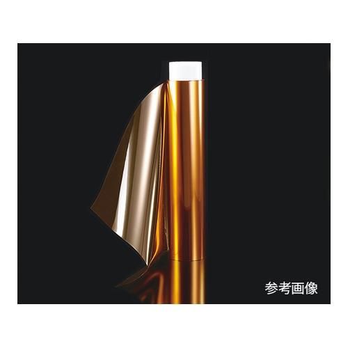 アズワン 熱可塑性ポリイミドフィルム 1パック(2枚入り) [3-8010-03]