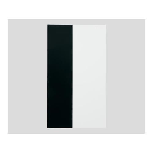アズワン 隠ぺい率試験紙 タテ白黒Aタイプ 100枚入り 1セット [1-3783-03]