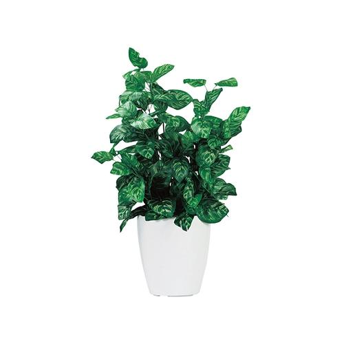 アズワン 人工観葉植物 ピーコック G-PK 1個 [7-3401-02]