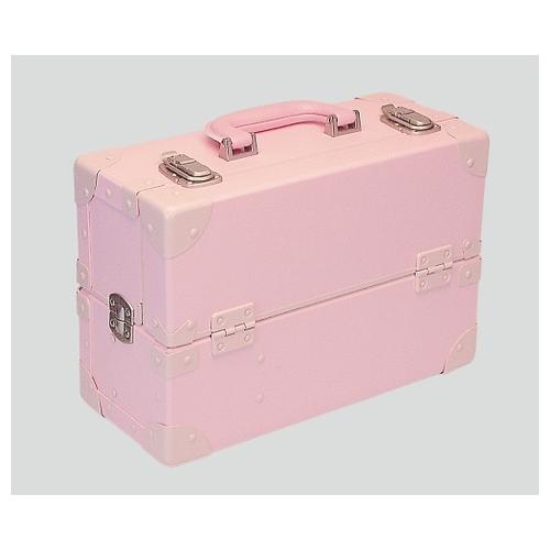 アズワン 尊体用メイク剤 ピンク ID 1セット [8-6317-01]