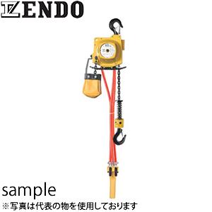 遠藤工業(ENDO) AT型エアホイスト AT-125K チェーン式 125kg 3m