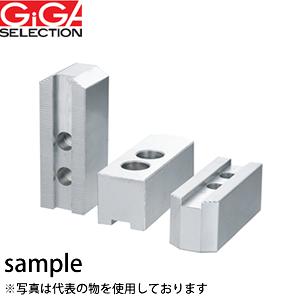 GIGA SELECTION(ギガ・セレクション) アルミ生爪 AL-N21-H70