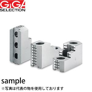 GIGA SELECTION(ギガ・セレクション) 硬爪 HJ15-22