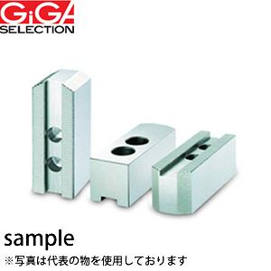 GIGA SELECTION(ギガ・セレクション) 生爪 HJ-8-H100