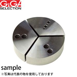 GIGA SELECTION(ギガ・セレクション) 円形生爪 R-KPC4-H38