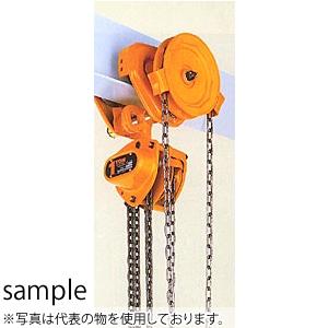 キトー(KITO) チェーンブロックマイティM3形 TSG形ギヤードトロリ結合形 CBSG100 定格荷重(t):10 [個人宅配送不可]