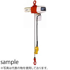 保障できる キトー(KITO) 電気チェーンブロック セレクト単相200V・220V 1速形 EDX24S [個人宅配送] 揚程:3M 定格荷重(kg):240 [個人宅配送], 京葉ゴルフ:328aae00 --- cleventis.eu