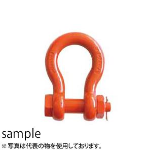 大洋製器 スーパーアロイシャックル ボルト・ナット止めタイプ TB-20 (1014087) 使用荷重:20t
