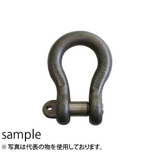 大洋製器 新商品 出荷 JISシャックル クロ 1007663 使用荷重:10t BC-40