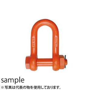 大洋製器 軽量シャックル ボルト・ナット止めタイプ RS-63 (1062685) 使用荷重:63t