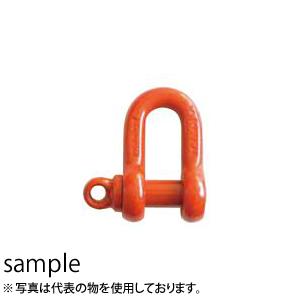 大洋製器 スーパーアロイシャックル 捻込タイプ TSS-10 (1256048) 使用荷重:10t