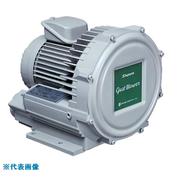 ■昭和 電動送風機 渦流式高圧シリーズ ガストブロアシリーズ(1.5kW) U2V-150 昭和電機(株)[TR-2387441] [個人宅配送不可]