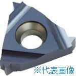 ■NOGA Carmexねじ切り用チップ ISOメートルねじ用 チップサイズ16×P1.25×60°(10個) 16IR1.25ISOBMA [TR-4034643×10]