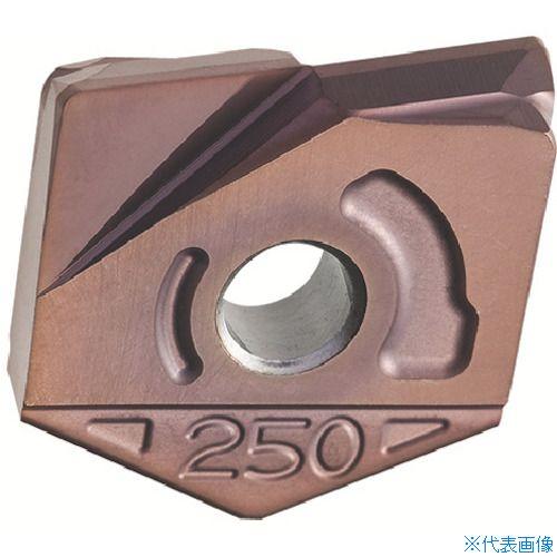 ■日立ツール カッタ用チップ ZCFW160-R1.0 BH250 BH250(2個) [TR-4297776×2]
