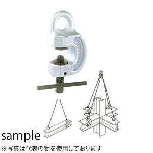 イーグルクランプ ねじ式全方向クランプ SBN-800 使用荷重(最小-最大 kg):160-800