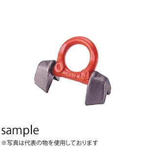 <title>イーグルクランプ 溶接式アイプレート 直角部材用 RBK-3 最大使用荷重 t :2.5 ディスカウント</title>