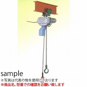 二葉製作所 グリーンミニ 電気チェーンブロック 単相100V CGP-250-W 3M 2PBS プレントロリ