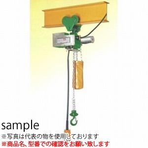 二葉製作所 ミニパワー 電気チェーンブロック 単相100V プレントロリ付CWP120K 6M 2PBS