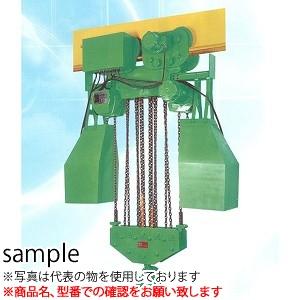 二葉製作所 電気チェーンブロック 200V FH型 FH-2.5T 4M 2PBS