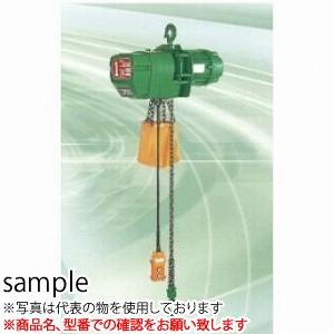 二葉製作所 電気チェーンブロックFH-TS型FH-TS2.5T 4M 2PBS