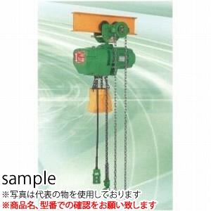 二葉製作所 電気チェーンブロックFHG型FHG-2T 4M 4PBS