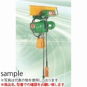 二葉製作所 電気チェーンブロックFHL-TS型FHL-TS1/2T 3M 4PBS