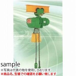 二葉製作所 電気チェーンブロックFHP型FHP-1T 3M 4PBS