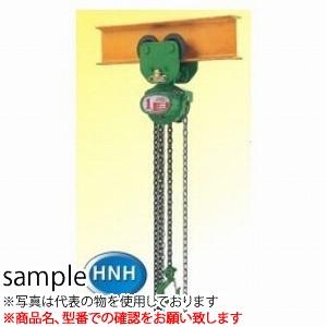 二葉製作所 手動式チェーンブロック HNH型 HNH3TW 3M