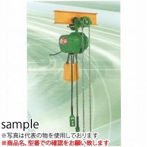 二葉製作所 電気チェーンブロック 単相100V SC型 SCG1/2T 3M 2PBS