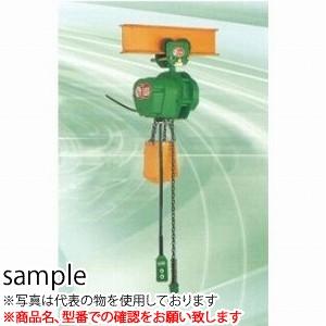 正規通販 2PBS:セミプロDIY店ファースト 電気チェーンブロック SC型 3M 単相100V 二葉製作所 SCP1/2T-DIY・工具
