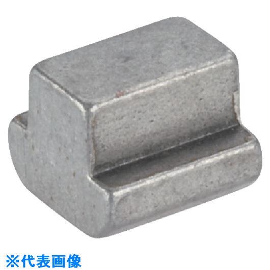 ■HALDER Tナット DIN 508 T溝幅48 表面処理なし   〔品番:23010.0480〕[TR-1062911]