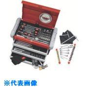 欲しいの ?KTC 2011SKセール 整備用工具セット[101点組]〔品番:SK30111EZ〕[TR-1177057]:ファーストFACTORY-DIY・工具
