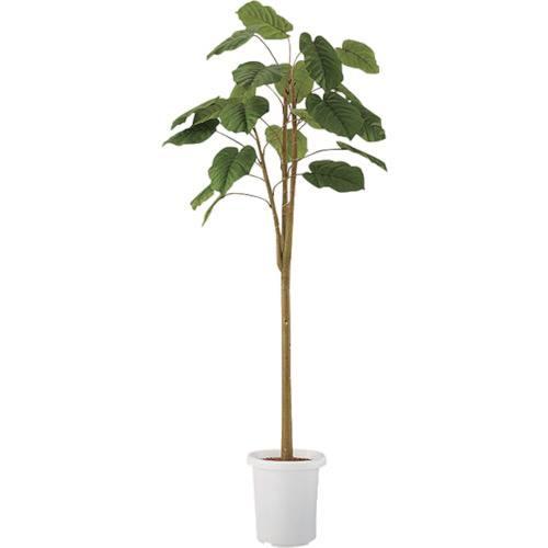 ■ナイキ 人工樹木〔品番:AG371〕[TR-1185467 ]【送料別途お見積り】