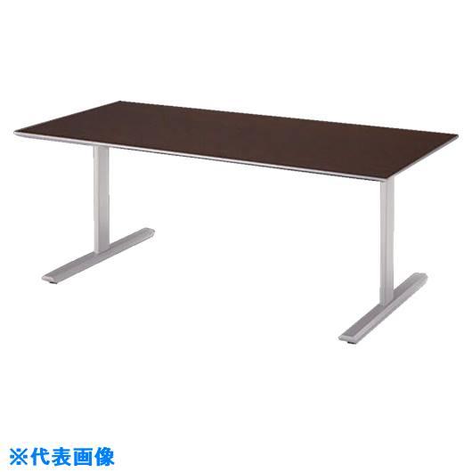 ■ナイキ 会議用テーブル〔品番:KGU1575C-CF〕[TR-1239882 ]【送料別途お見積り】