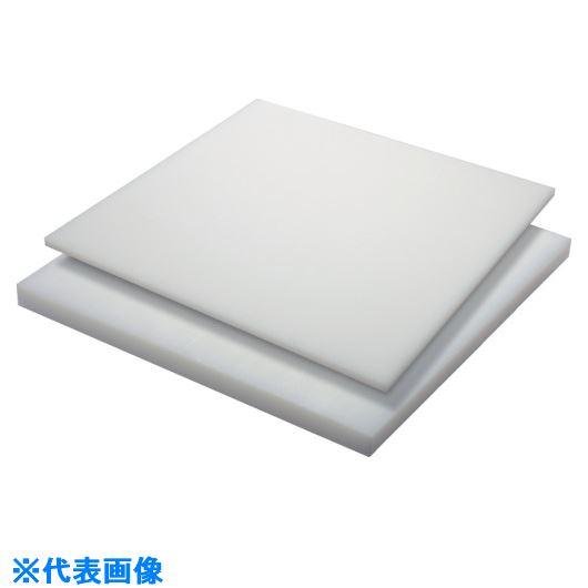 ■タキロン HDPE 10T×500×1000 白〔品番:TP-PE-PLATE-720A-10-500-1000〕[TR-1243603]【個人宅配送不可】