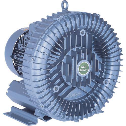 ■昭和 電動送風機 渦流式高圧シリーズガストブロアシリーズ1.1/1.7kW〔品番:U2S-150〕[TR-1248077 ]【送料別途お見積り】