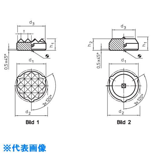 ■HALDER ハンドクランク DIN468グースネック 形状F  〔品番:24330.0380〕[TR-1269862]