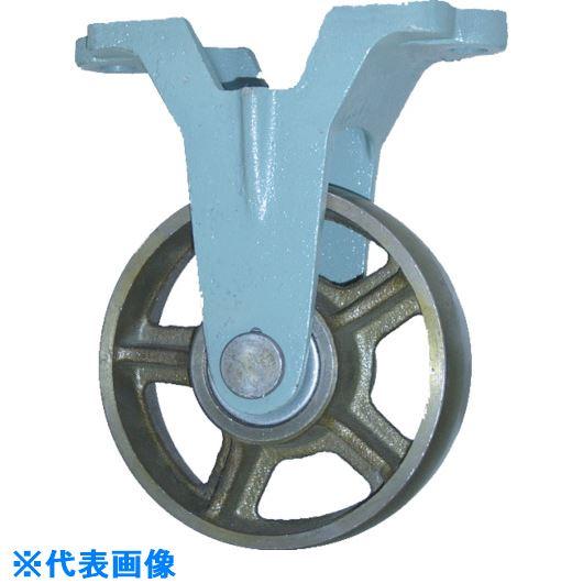 ■ヨドノ 鋳物車輪固定車付きベアリング入 300Φ〔品番:CB-K300〕[TR-1318768]