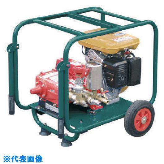 ■アサダ 高圧洗浄機30/50G〔品番:HD3005G〕[TR-1355412]【個人宅配送不可】