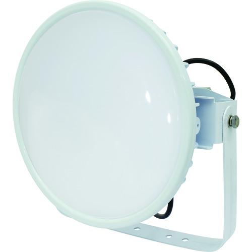 ■日動 ハイディスク300W 電源装置一体型 昼白色 投光器型 乳白ワイド〔品番:L300V2-D-HMW-50K〕[TR-1618918][送料別途見積り][法人・事業所限定][掲外取寄]