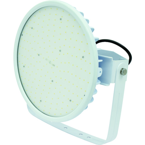 ■日動 ハイディスク200W 電源装置一体型 昼白色 投光器型 ワイド〔品番:L200V2-D-HW-50K〕[TR-1622024][送料別途見積り][法人・事業所限定][掲外取寄]