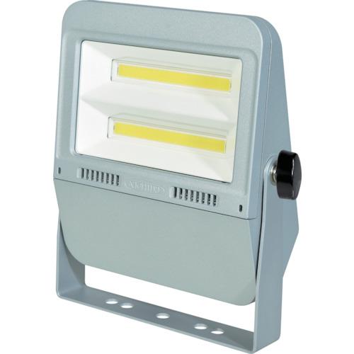 ■日動 LED投光器 フラットライト50W〔品番:LEN-F50D-SL-50K〕[TR-1623654][送料別途見積り][法人・事業所限定][掲外取寄]