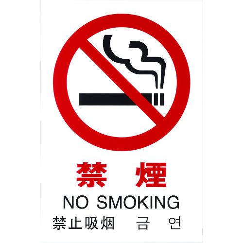 ■光 多国語ピクトサイン 禁煙 5枚入 〔品番:TGP2032-1〕[TR-1950171×5]