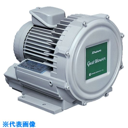 ■昭和 電動送風機 渦流式高圧シリーズ ガストブロアシリーズ(0.2KW)  〔品番:U2V-20T〕[TR-2387379]【個人宅配送不可】