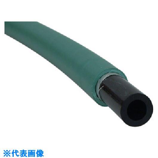 ■チヨダ ALEチューブ 6mm/100 緑〔品番:ALE-6〕[TR-5419484]【個人宅配送不可】